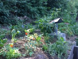 Les jardins du Vallon